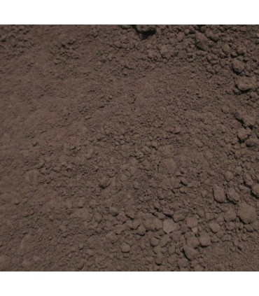 Pigment brown