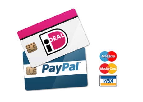 payment online store